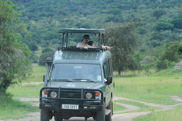 what to do in Rwanda