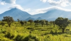skynews-virunga-national-park_4306898